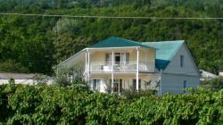 Гостевой дом Домик в Гаграх