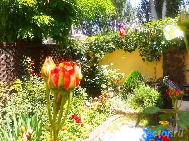 Дом в Феодосии для семейного отдыха. +79183072479